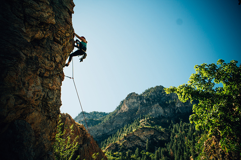 A woman rock climbing with trees and mountains in the background.