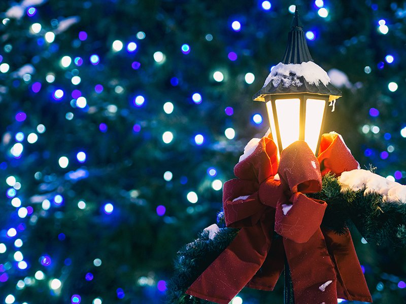 A lamp with a red bow and garland around it, all dusted with snow, in front of a tree lit with blue lights.